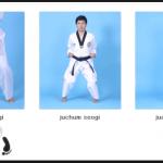 Nama Dan Istilah Gerakan Dasar Taekwondo